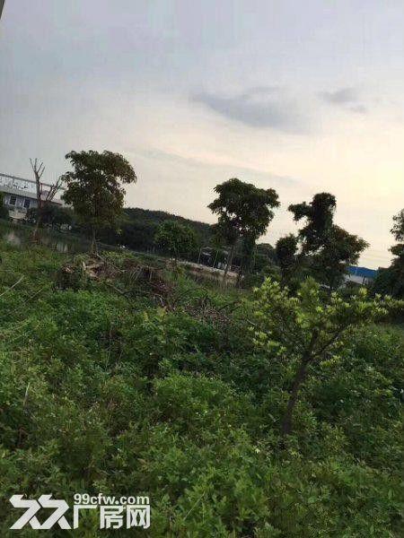 石基/南村/市桥大路边农保地水泥地出租-图(4)