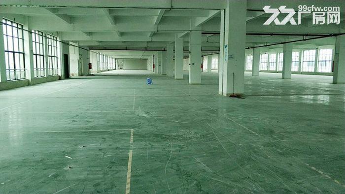 房产证消防证,可分租,南村12000方标准厂房出租-图(2)