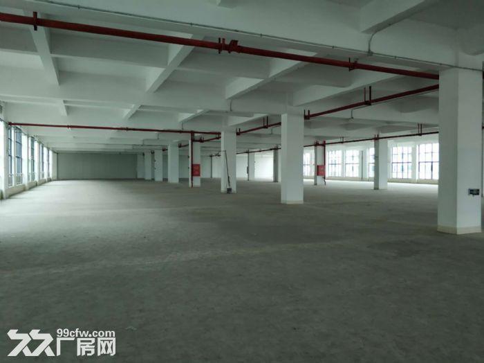 房产证消防证,可分租,南村12000方标准厂房出租-图(6)