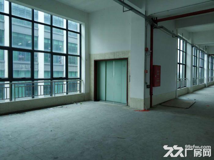 房产证消防证,可分租,南村12000方标准厂房出租-图(5)