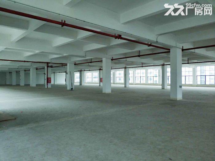 房产证消防证,可分租,南村12000方标准厂房出租-图(7)