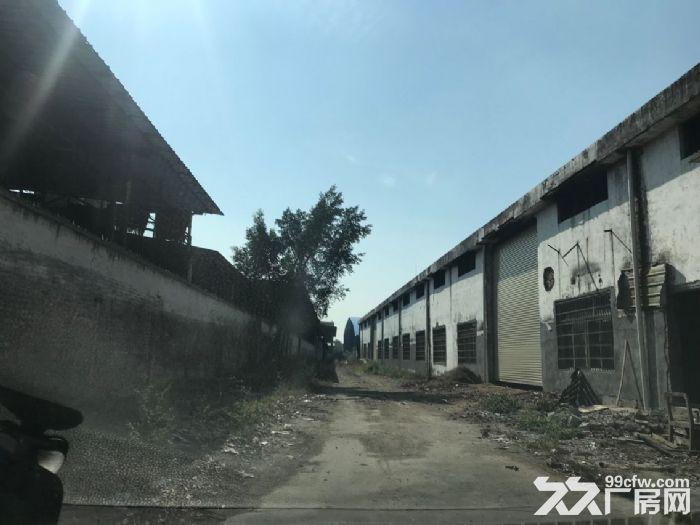 租期长路边近高速南沙2600平方简易厂房出租-图(3)