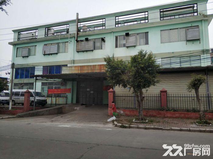 服装行业旺地,证齐,南村工业区4000平标准厂房-图(1)