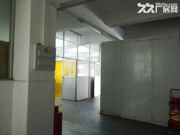 服装行业旺地,证齐,南村工业区4000平标准厂房-图(4)