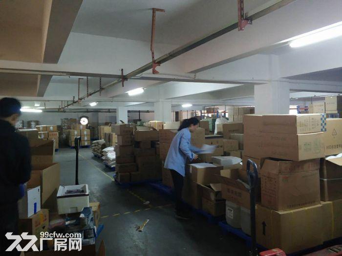 服装行业旺地,证齐,南村工业区4000平标准厂房-图(3)