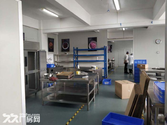 服装行业旺地,证齐,南村工业区4000平标准厂房-图(6)