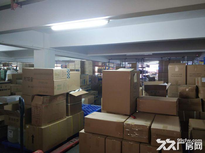 服装行业旺地,证齐,南村工业区4000平标准厂房-图(8)