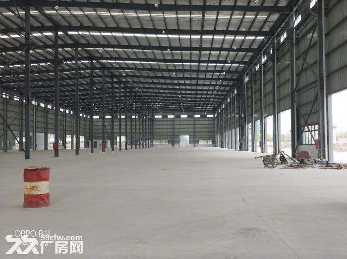 龙泉经开区吉利旁3000平米钢结构厂房-图(2)