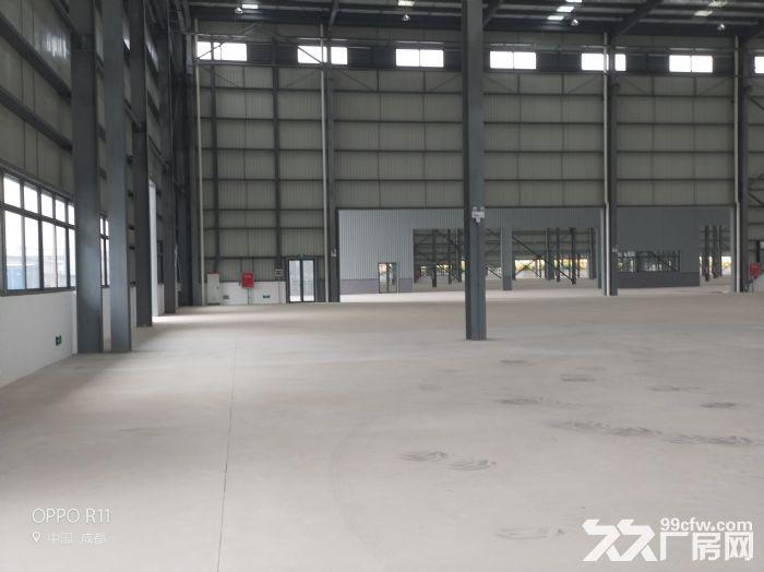 龙泉经开区吉利旁3000平米钢结构厂房-图(4)