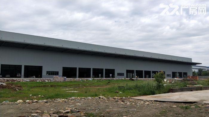 龙泉经开区吉利旁3000平米钢结构厂房-图(6)