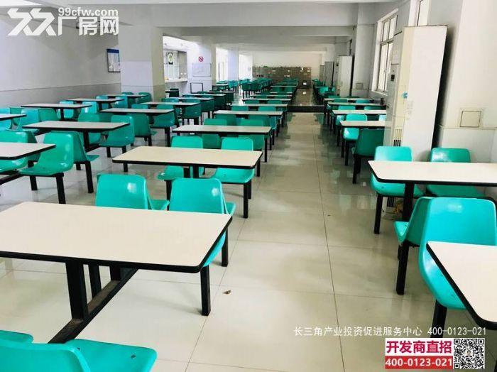 G2381松江东部开发区车墩G60科创走廊核心地带多层独栋厂房办公楼出租-图(3)