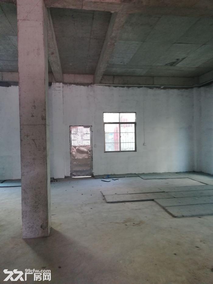 海口出租仓库,仓库可用于住房存货两用。-图(2)