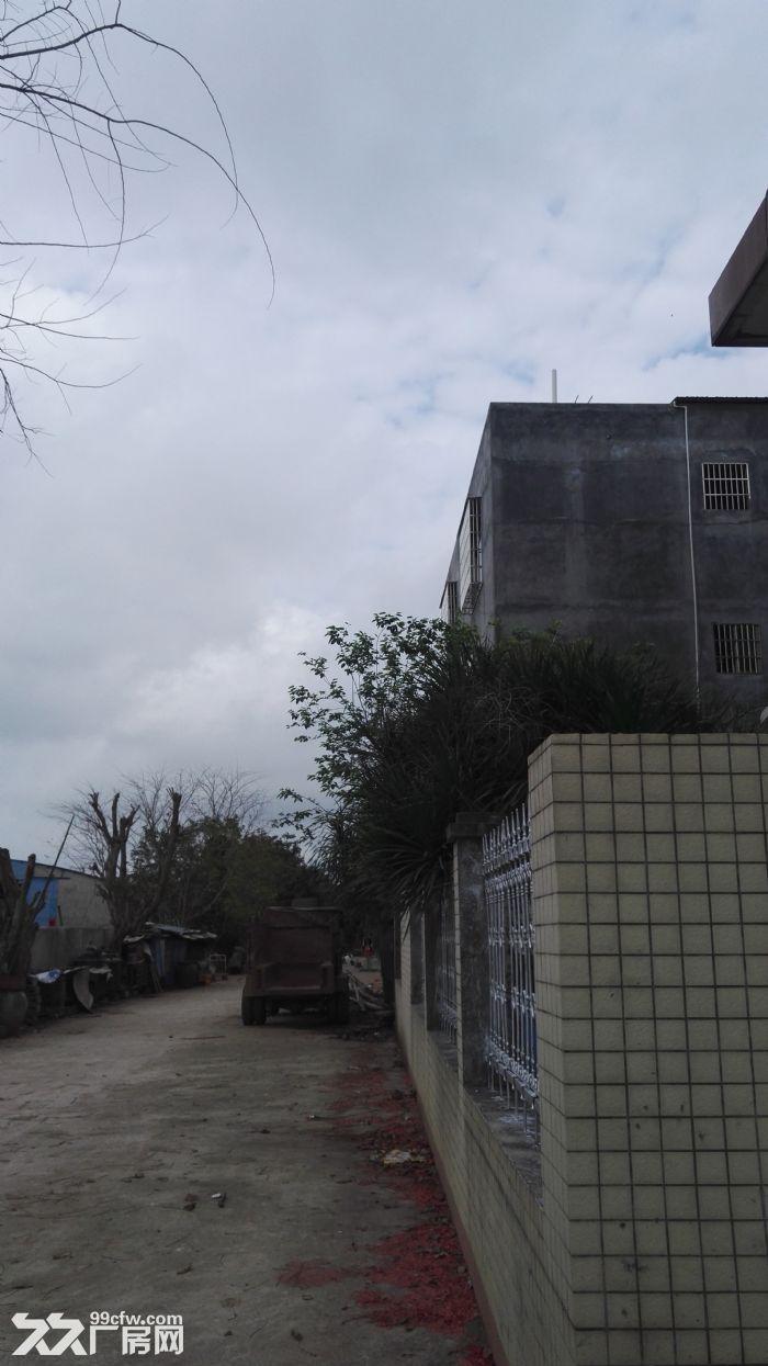 海口出租仓库,仓库可用于住房存货两用。-图(6)