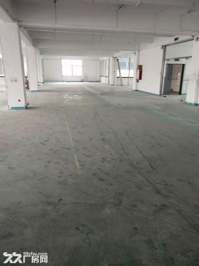 杏林杏北工业区二楼标准厂房1100平出租-图(1)
