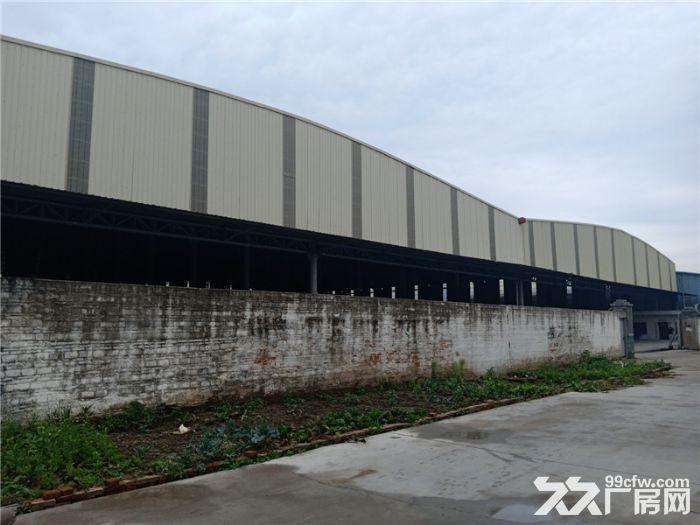 中高13米、能分租,五沙10000平方简易厂房出租-图(4)