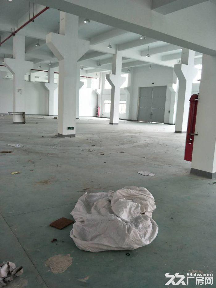 一手房东渭塘新建独栋7000平方厂房层高8米可架行出-图(2)