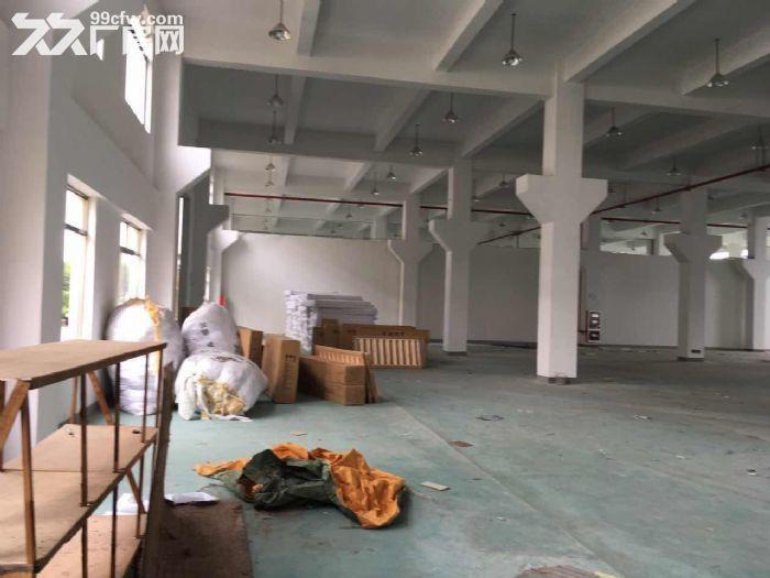 一手房东渭塘新建独栋7000平方厂房层高8米可架行出-图(3)