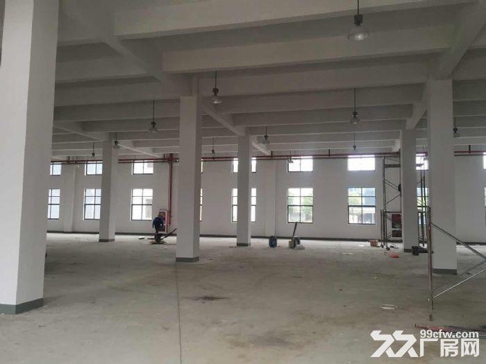 一手房东渭塘新出底楼500平方厂房火爆招租-图(2)