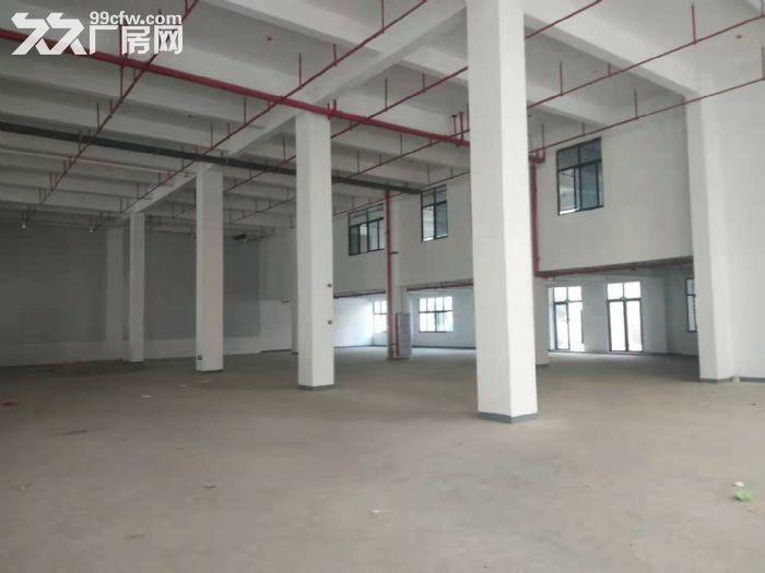 杏林杏北路附近1楼标准厂房1600平出租-图(1)