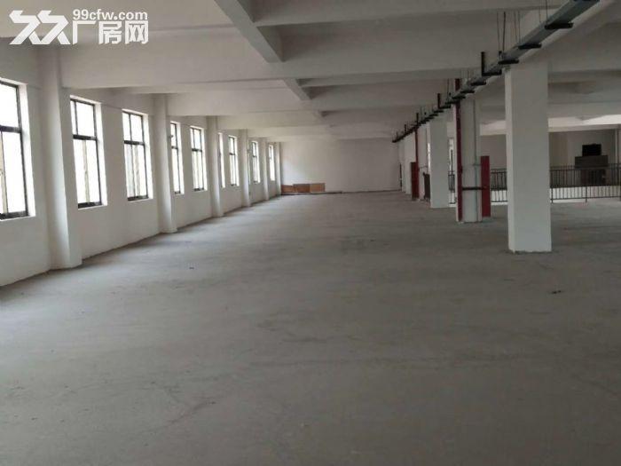 联港路1200平二楼标准厂房出租有货梯+环境好+位置好-图(2)