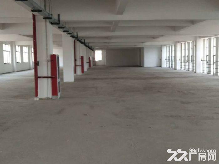 联港路1200平二楼标准厂房出租有货梯+环境好+位置好-图(4)