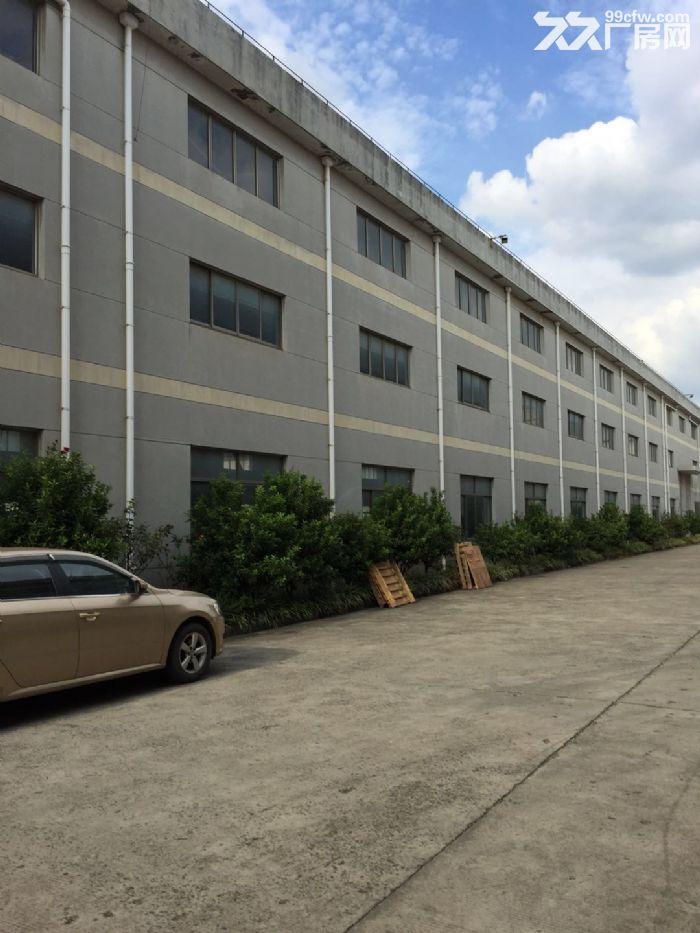 松江东部工业区1550平方一楼高13米标准厂房仓库出租,证件齐全,104地块-图(1)