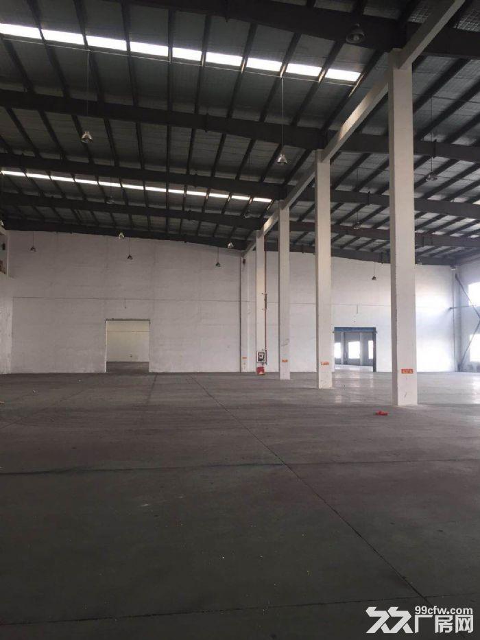 松江东部工业区1550平方一楼高13米标准厂房仓库出租,证件齐全,104地块-图(2)