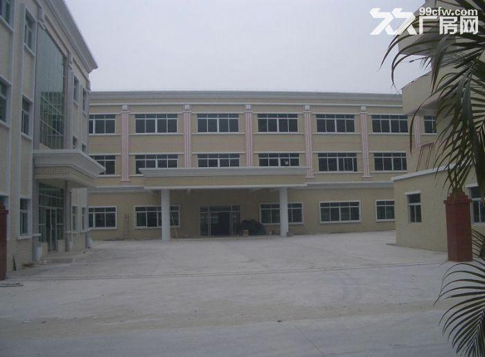 企石新出独院标准三层厂房3100平方,现成消防喷淋,可分租-图(1)