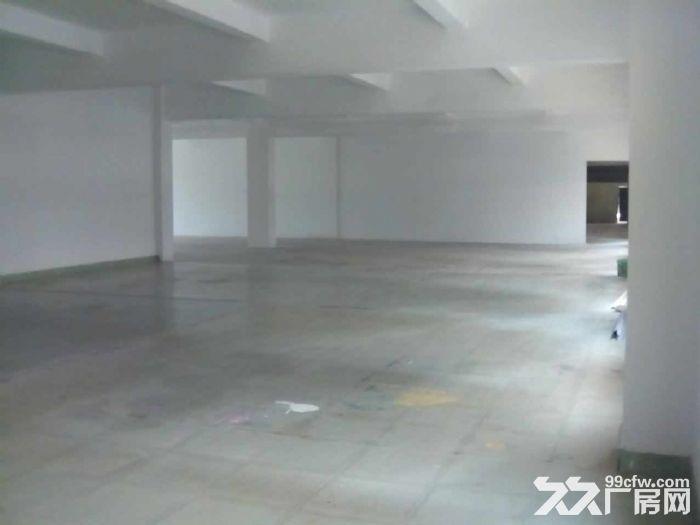 横沥原房东独门独院精装花园式两层厂房2300平方,现成办公室-图(2)