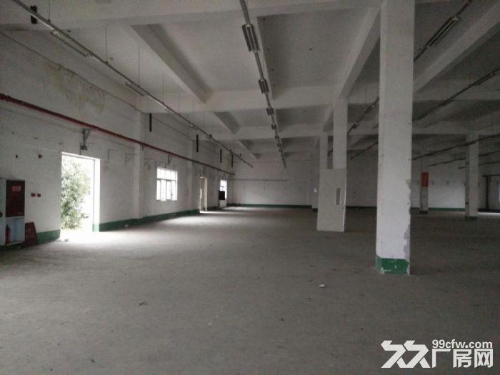 双流西航港1400平米框架结构高7米独栋出租-图(3)