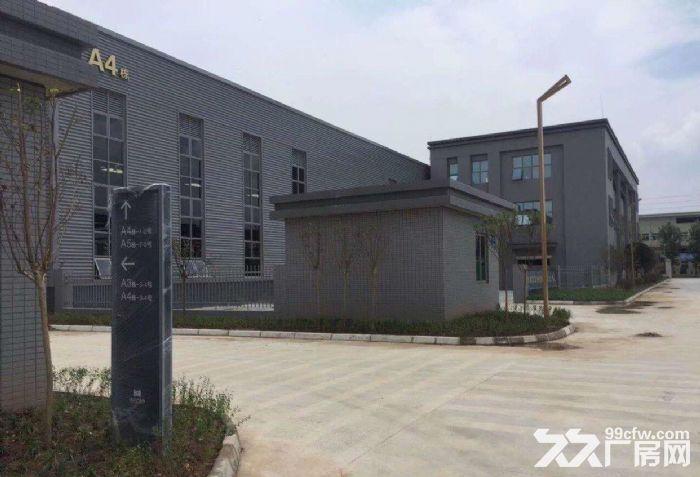 出租正规园区标准厂房6000平可分租-图(5)