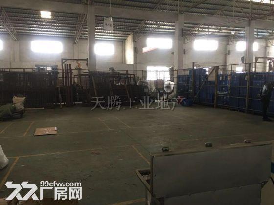 中山大岑700方单一层厂房,配电大,水电齐全-图(3)