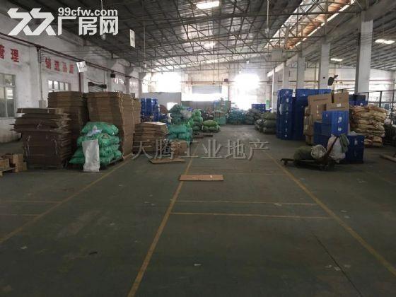 中山大岑700方单一层厂房,配电大,水电齐全-图(2)