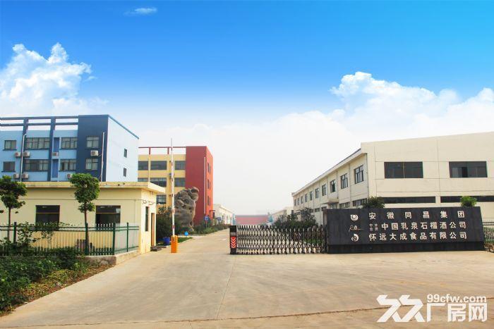 1300平米厂房+宿舍+食堂+仓库+冷库出租-图(6)
