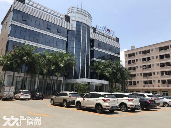 新塘32600平方(可分租)标准厂房招租-图(4)