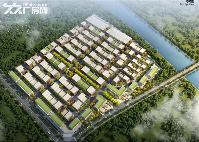 50年正规园区标准厂房租售-图(1)