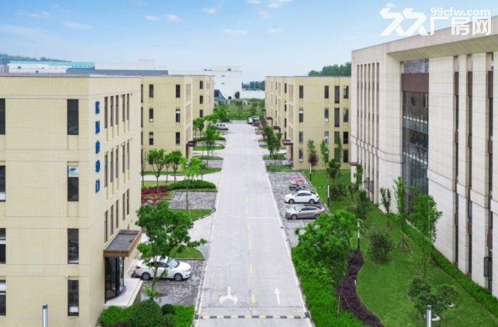 园区独立产权厂可租可售房面积1500−5000每栋-图(2)