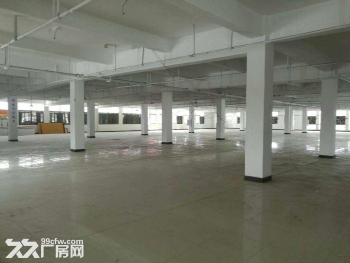 闽侯荆溪甘蔗铁岭工业区混凝土结构厂房出租-图(4)