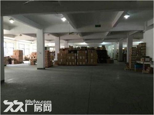 青浦工业园区1700平米价格0.75元-图(1)