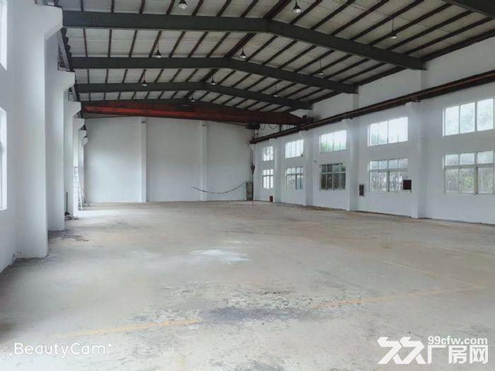 荣乐东路附近2200平方单层高11米带5吨行厂房仓库出租,面积可分割,证件齐全-图(3)