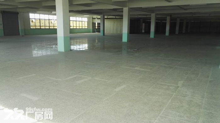 厂房惠安黄塘高速出口附近交通便利,单层面积3500平方,配备250KVA变压器-图(4)