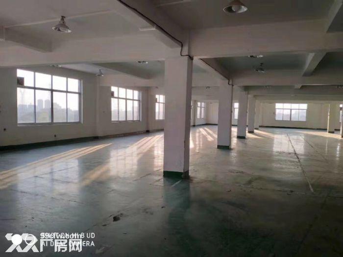 闻堰标准厂房300方2000方,招淘宝电子科技等-图(5)