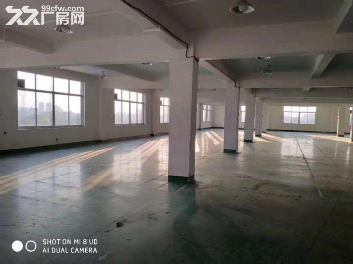 闻堰单层1400方标准厂房,适合淘宝仓库直接拎包-图(1)