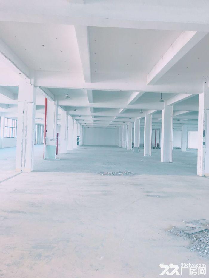 闻堰单层1400方标准厂房,适合淘宝仓库直接拎包-图(2)
