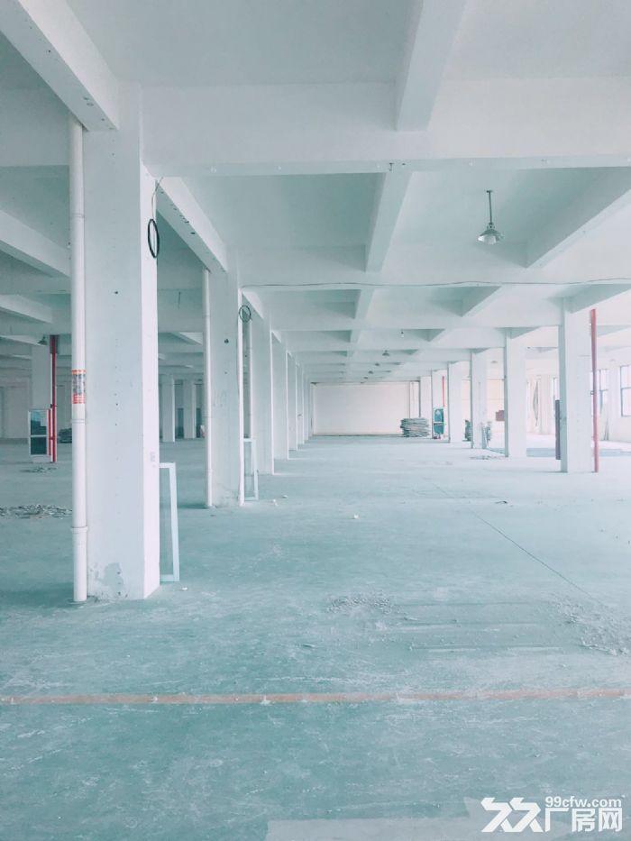 闻堰单层1400方标准厂房,适合淘宝仓库直接拎包-图(4)