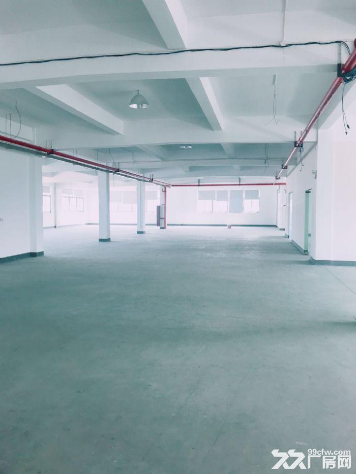闻堰单层1400方标准厂房,适合淘宝仓库直接拎包-图(5)