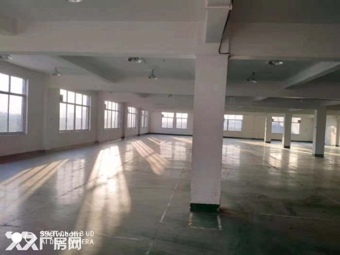 闻堰单层1400方标准厂房,适合淘宝仓库直接拎包-图(7)