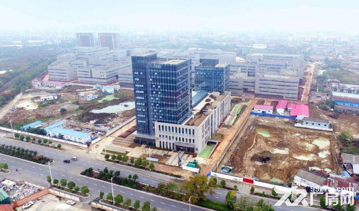 出租国际标准新厂房每层面积1000−3000平不等-图(2)