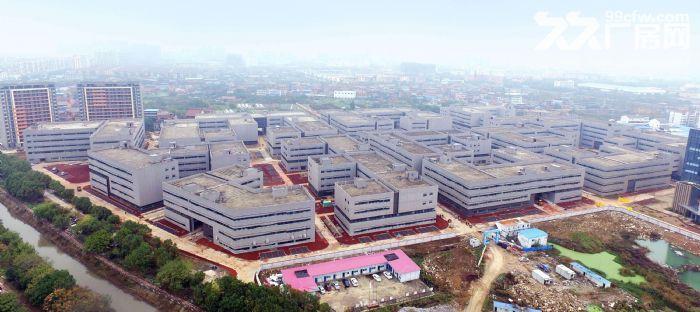 出租国际标准新厂房每层面积1000−3000平不等-图(3)