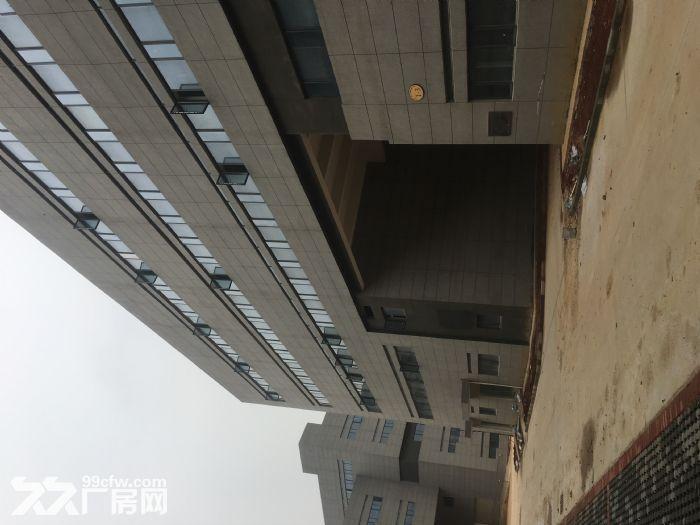 出租国际标准新厂房每层面积1000−3000平不等-图(4)